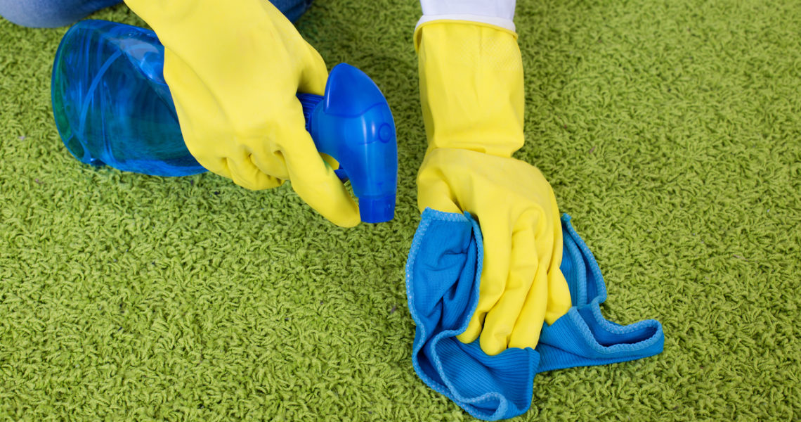 Close up of female hands holding cloth and spray bottle above green carpet